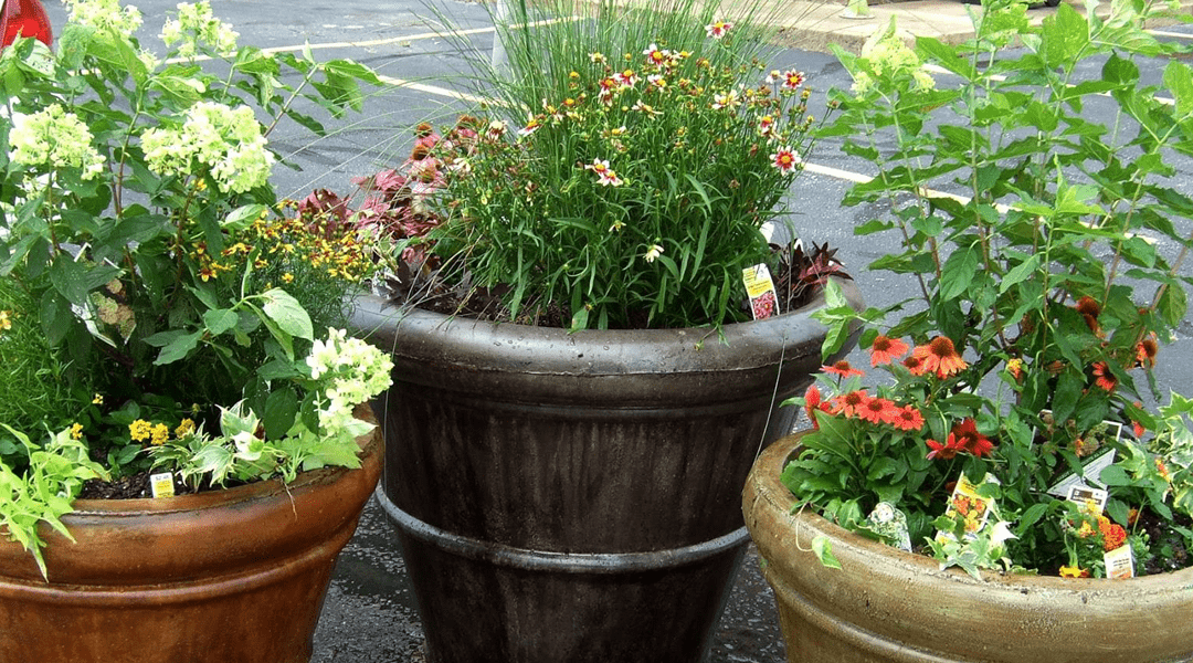 """Corner Planters"" Brighten our Gateways"
