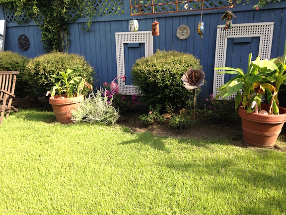 Oct Yard of the Month 2015
