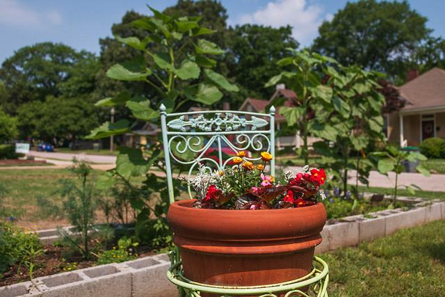 Bob's Monthly Garden Checklist-September